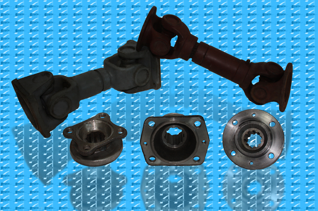 Flanges universal joint